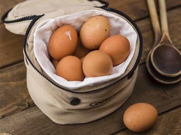 Intoxicaciones_huevos_FarmaciaI+