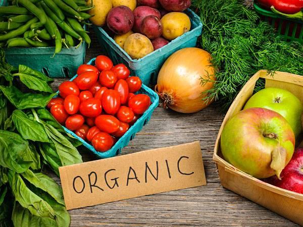 Alimentos orgnicos_Farmacia I