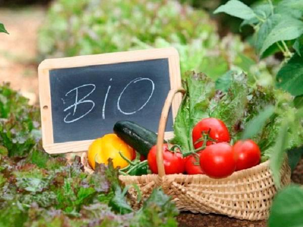 Alimentos biolgicos_Farmacia I